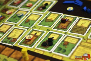 Agricola cards in play