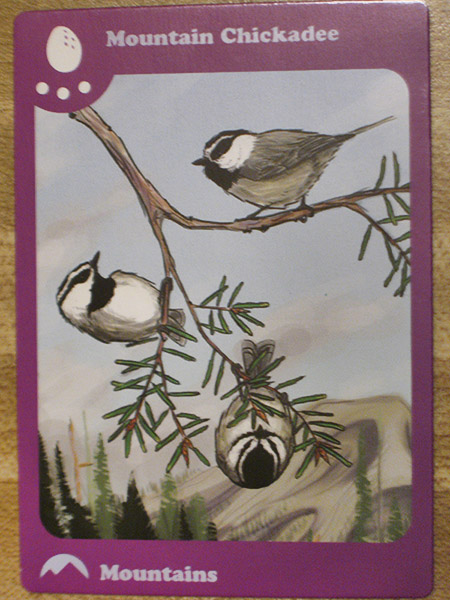 birds of feather mountain card