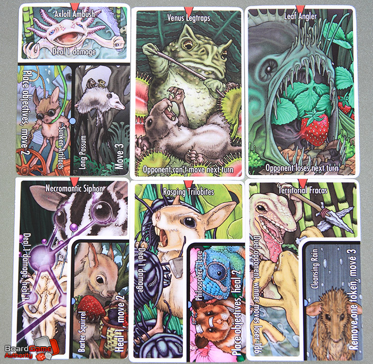 vasty wilds cards