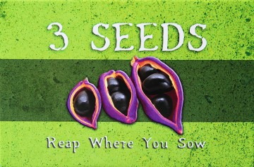 3 seeds game box